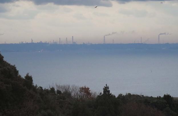 鹿島臨海工業地帯を望む