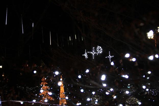 北軽井沢の小さな灯り