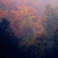 写真: 霞む秋景色