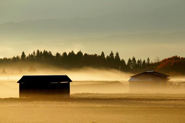 写真: 秋霧