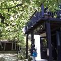 写真: 02-原茂ワイン-カフェ