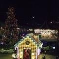 写真: 東京ドーム^ツリーとお菓子の家3