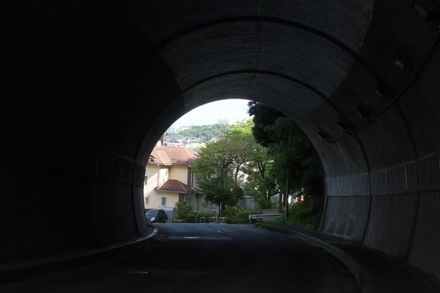 写真: R0013125