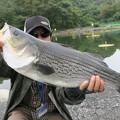 写真: 釣り場の主を釣ったぞ