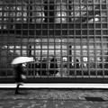 写真: 雨のエルメス