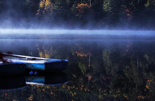 写真: 信州 白駒池