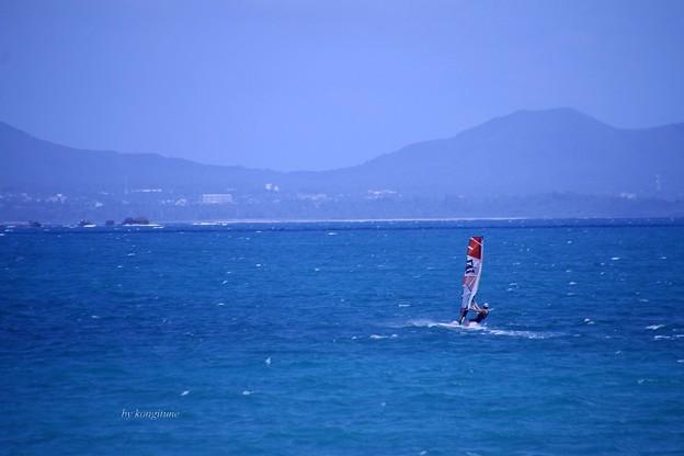 写真: 南の海