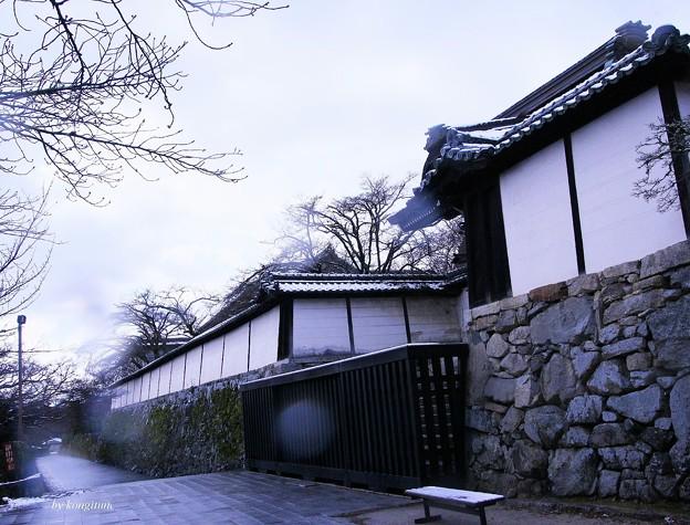 滋賀院門跡(雪の日に)