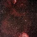 Photos: クリスマスツリー星団からばら星雲に至る