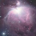 写真: M42 (178MMセカンドライト)