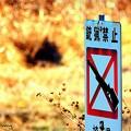 Photos: 銃猟禁止