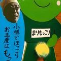 Photos: やまべぇさんと、まりもっこり