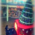 写真: Merry Christmas