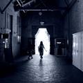 写真: 光りの中へ