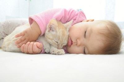 「ネコとの生活が小児喘息の発症リスクを軽減する」との研究結果