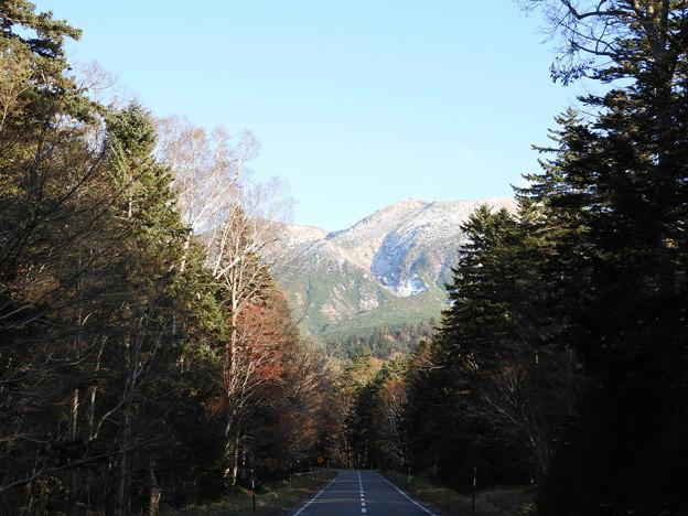 オンネトーへの道