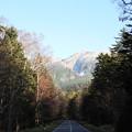 写真: オンネトーへの道
