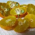 Photos: 柚子湯ならぬシークワーサー湯。