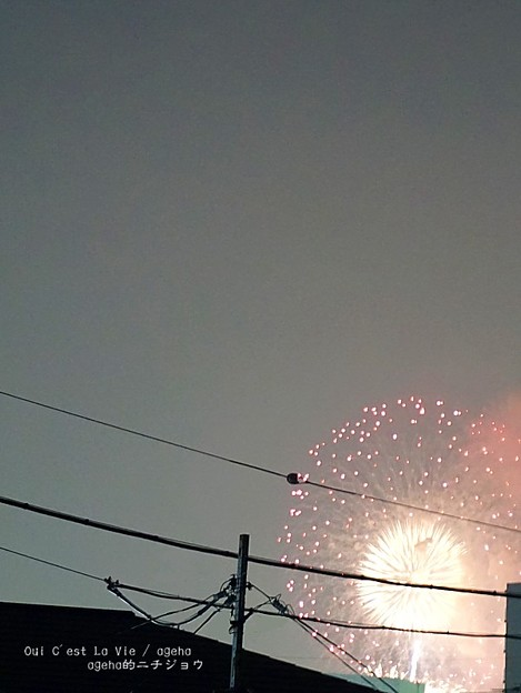 荒川花火。