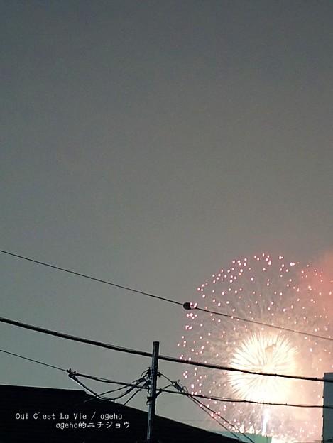 Photos: 荒川花火。