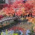 京都・永観堂