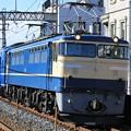 Photos: EF65 501(24系)