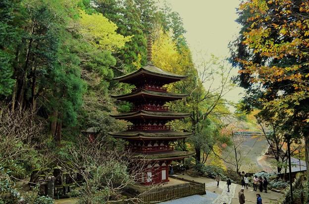 写真: 室生寺五重塔