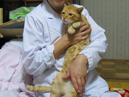2009年11月11日のボクチン(5歳)