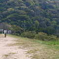 Photos: 深坂の自然の森公園
