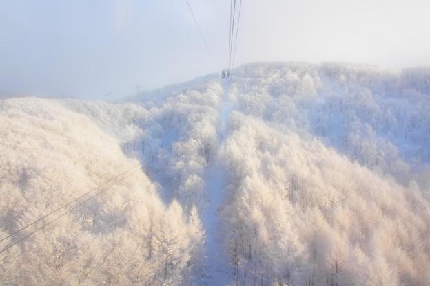 雪の世界の入口