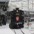 Photos: SLはこだてクリスマスファンタジー号3号 12