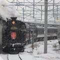 Photos: SLはこだてクリスマスファンタジー号3号 14