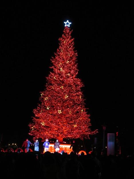 はこだてクリスマスファンタジー 19