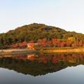 写真: 秋を映す池