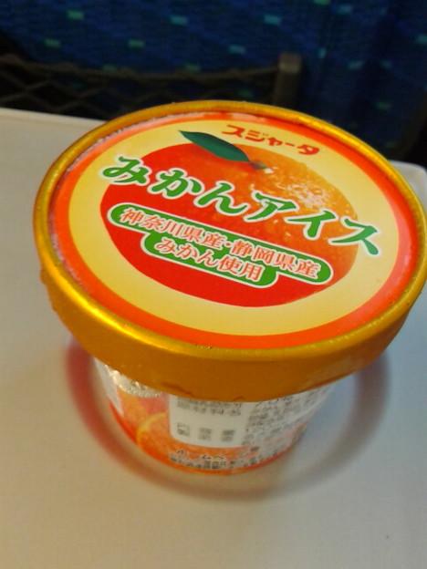 今日は名古屋までだから駅弁はナシ。着くまでに食べられるかコレw