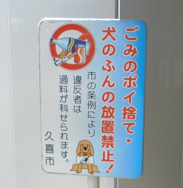 犬糞~久喜市