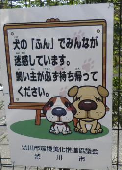犬糞~渋川市
