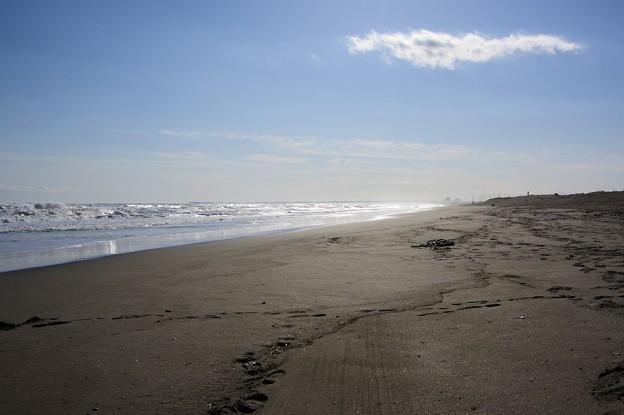 冬の太平洋(2)