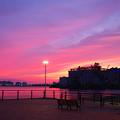 Photos: 燃ゆる港