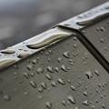 Photos: 豪雨の記憶