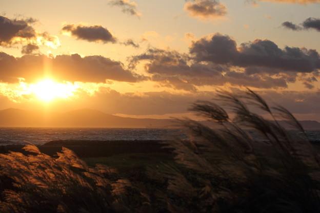 台風を横目に夕日とススキ