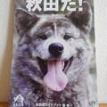 Photos: 秋田だ! JR観光パンフレット