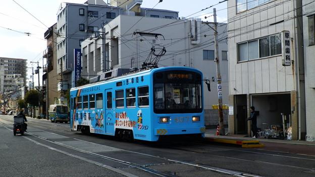 P1139523