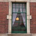 Photos: Window