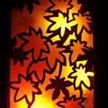 写真: 秋のともしび