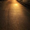 写真: 川土手の道