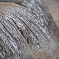 写真: 171002_山梨県北杜市・白州・尾白の森名水公園「べるが」_親水池_G171002K7089_MZD300P_X8Ss