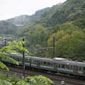 写真: 染まり初めの裏高尾と211系ハイキング列車