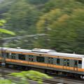 染まり初めの裏高尾とE233系都心から直通列車