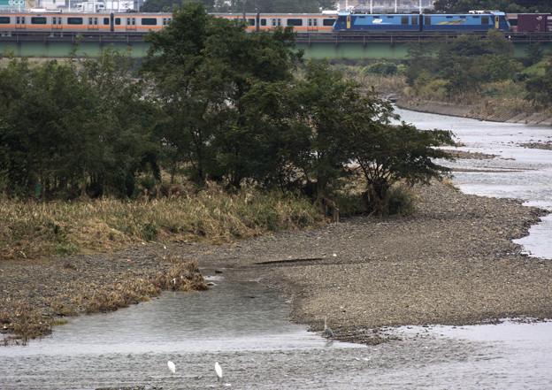 秋雨前線下の河原にて